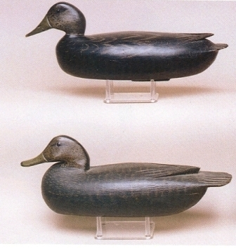 These are two Delaware River black duck decoys, the upper one by Dan English, and the lower one by Tom Fitzpatrick. In 2001 the English decoy realized $1,500 and the Fitzpatrick decoy realized $1,600 at a Guyette and Schmidt auction. Photo courtesy of Guyette and Schmidt.