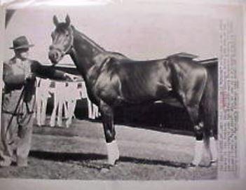 A wire photo of the 1948 Kentucky Derby winner Citation, who was ridden by Eddie Arcaro.