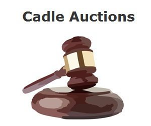 Cadle Auctions