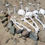 A looted pre-Columbian cemetery in Peru