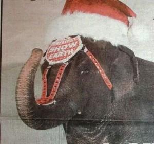 santa-elephant-cropped