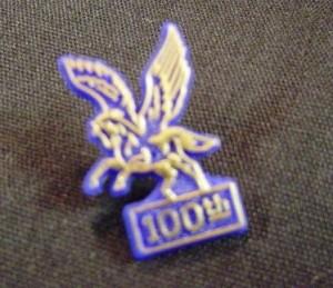 1974 Pegasus pin