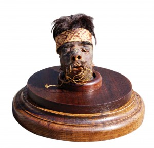 One of three museum-quality heads, this one a shrunken head from the tribes of South America.