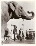 This classic publicity image was used by Clyde Beatty Cole Bros. Circus for many years.