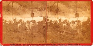 Both show the interior of the menagerie tent in 1876-77. Each of these stereo cards is valued at $400-$500. The one with the giraffe is most valuable.