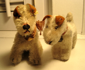Steiff's Foxy Fox terriers in the sitting and standing versions.