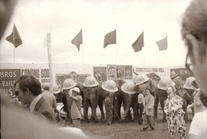 I took this photo of the elephants wearing construction hardhats at the groundbreaking of Circus World in 1973. The bright yellow hard hat was one of the many items on display at the reunion. It was restored by Billy Williams and brought to the reunion by Billy and his wife Karen.