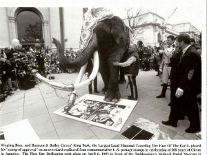 The kit contained media releases and this photo of King Tusk who was on hand for the first day dedication to give his stamp of approval. Ringmaster Jim Ragona presided over the dedication ceremonies. The kit with its contents is valued at $10-$15.