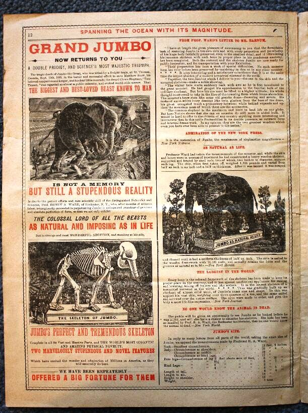 Jumbo was killed when struck by a train on Sept. 15, 1885, but for a number of years Barnum continued to exhibit his skeleton and stuffed hide. Jumbo is featured on this page from a courier published for the London engagement of The Greatest Show On Earth, which began Nov. 11, 1889. Value of the courier is $100.