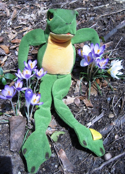 Leaping into the green is an example of an early Steiff Cappy Frog, which can value from $60 to $80 range.