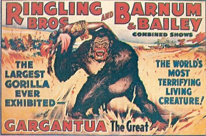 So, you found this Ringling Bros. and Barnum & Bailey Circus poster featuring Gargantua the Great that was first issued in 1938. It looks really old and sorta beat-up, so you post it on eBay as an original. You might expect to get an email from Worthologist Larry Kellogg explaining to you that you have made a mistake and that poster, although old, is a 1970s reproduction.