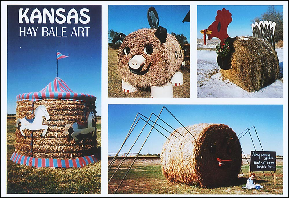 Postcard Time Machine Collecting America S Roadside